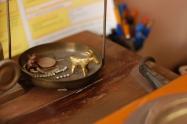 A bronzkecske tartja a frontot | Pálfy Ékszer