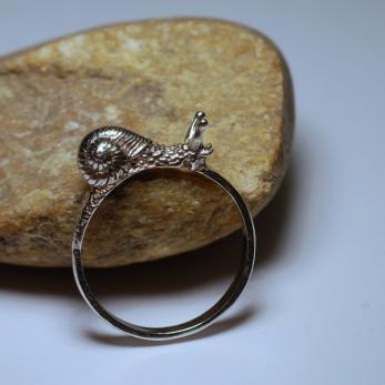 Élőcsiga gyűrű